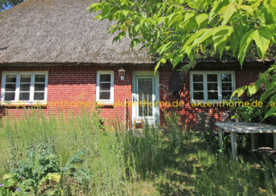 29456 Hitzacker - Haus Gartenansicht
